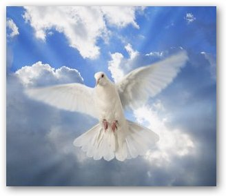 El espíritu de verdad al cual el mundo no puede recibir, porque no